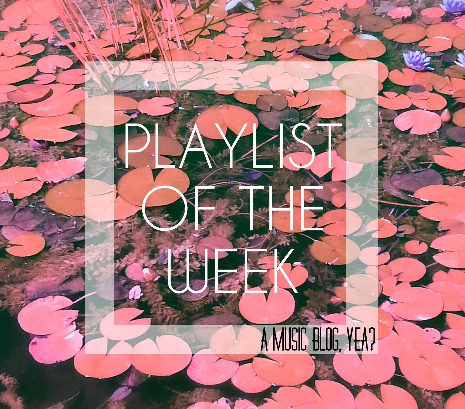 Playlist of the Week // Making Monday Magnificent