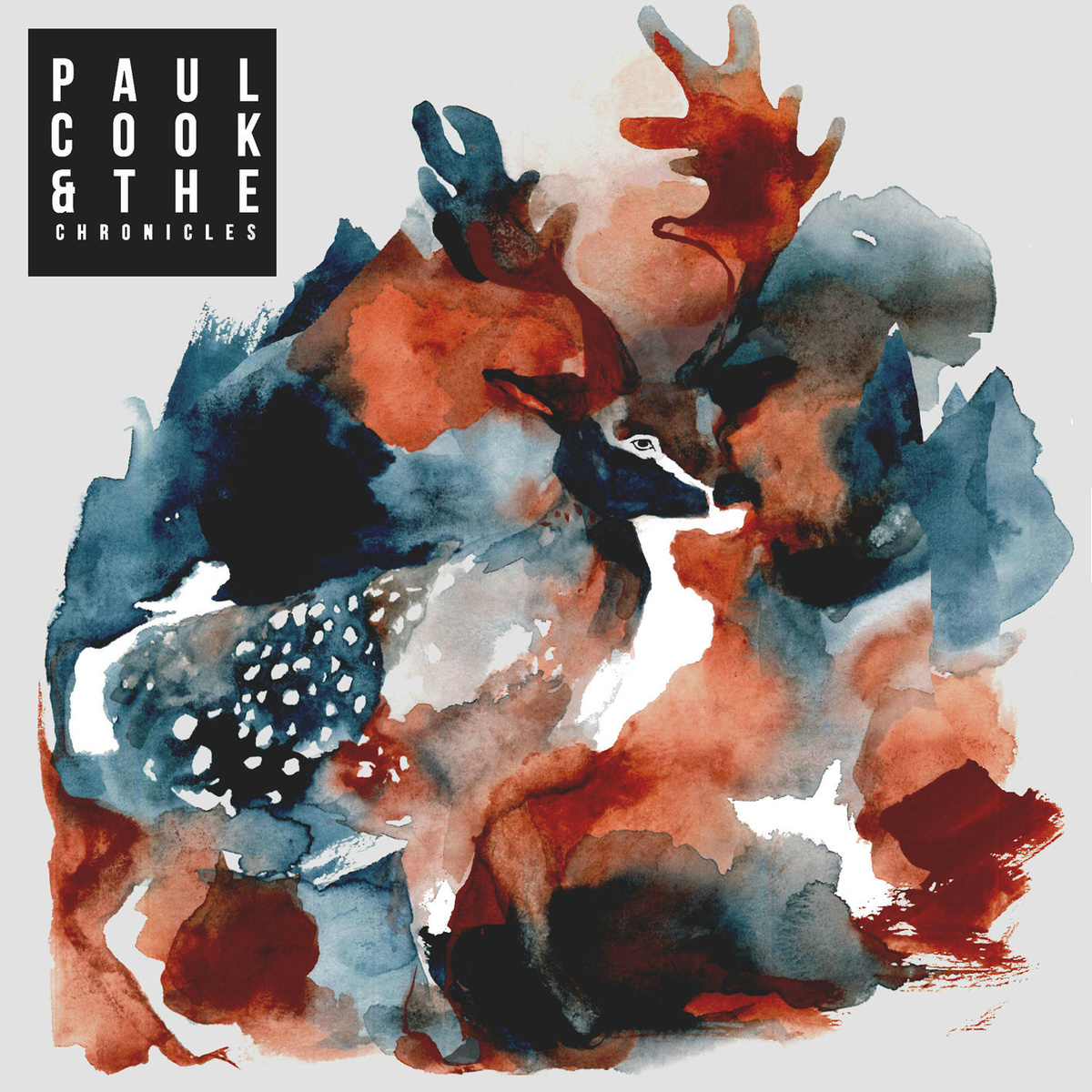 Paul Cook & The Chronicles